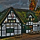 White Lion Inn by Aggpup