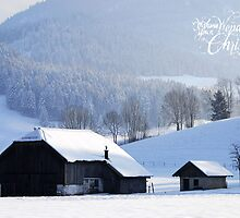 Wishing You a Wonderful Christmas by Sabine Jacobs
