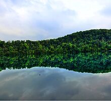 Nature's Mirror by janetlee