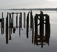 Alloa Dock by evisonphoto