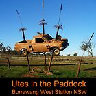 Utes in the paddock - Burrawang West Station NSW by DashTravels