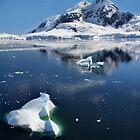 Majestical Antarctica by Robyn Lakeman