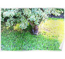 Bunny under a bush Poster