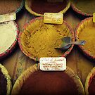 Spices by Caroline Fournier