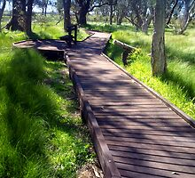 Boardwalk to a natural phenomenon by myraj