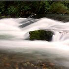 Big Qualicum River by fisherfreek