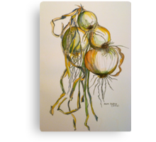 Drying onions. Tuscany. Canvas Print