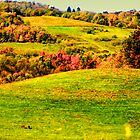 Rollings Hills of Deep Creek Lake by RICHARD CLINE