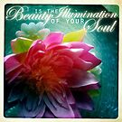Beauty Is The Illumination Of Your Soul by Sarah ORourke