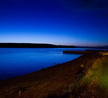 Night on the bay by AlexanderFord