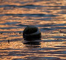 Buoy by AlexanderFord