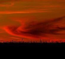 Harvest Sunset by Karen  Rubeiz
