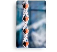 Icy Rain Chain Canvas Print