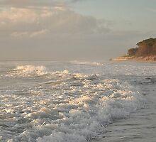 Fresh Morning Surf - Bribie Island  by Barbara Burkhardt