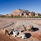 At Benhaddou Kasbah with Camels by Kerry Dunstone