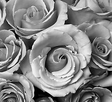 Rose Bouquet in Black and White by Bo Insogna