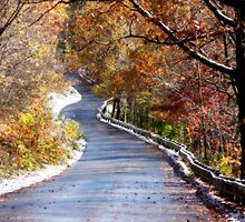 Winding Road by KerrieLynnPhoto