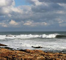 An Atlantic Thanksgiving by artwhiz47