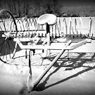 Snowy Hayrake by Debbie Robbins