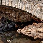 Under the Bridge by Daniel Rens