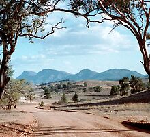 Flinders Ranges by Tim Coleman