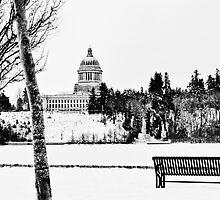 Winter in Olympia, Washington by Lynnette Peizer