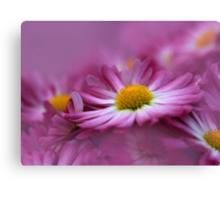 Love In Every Petal Canvas Print