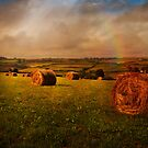 Cornish Fields by ajgosling