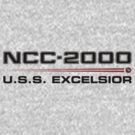ST Registry Series - Excelsior Logo by Christopher Bunye