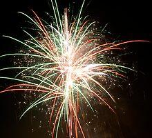 Firework by rosie320d
