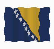 Bosnia flag by stuwdamdorp