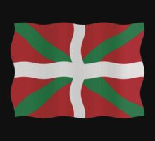 Basque flag by stuwdamdorp