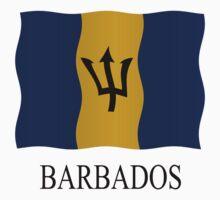 Barbados flag by stuwdamdorp