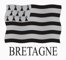 Brittany flag by stuwdamdorp