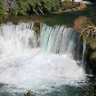 Krka waterfalls by Elena Skvortsova