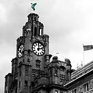 Liver building by Zoe Toseland