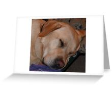 He Sleeps!!......(See Description Page) Greeting Card