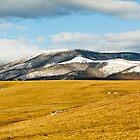 Beartown Mountain in Winter by Greg Booher