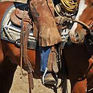 Cowboy in Montana by Donna Ridgway by Donna Ridgway