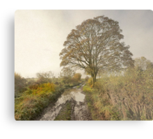 A Misty Autumn Morning In Yorkshire Metal Print