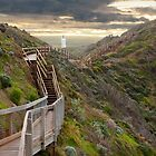 Cape Schanck by Keith Smith