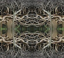 Mangrove strangeness and charm 2 by peteredbubble