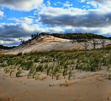 The Dunes by Dennis Granzow