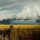 HP Supercell, SW of Wagga, N.S.W, Australia by Troy Barrett