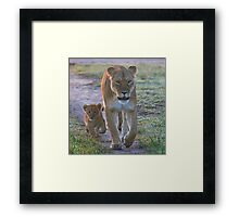 Following in Mother's Footsteps Framed Print
