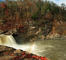 Cumberland Falls by kathy s gillentine