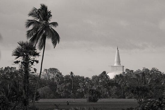 Ruwanweliseya - Anuradhapura, Sri Lanka by Dev Wijewardane