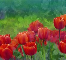 Luscious Red Tulips by Romanovna Fine Art Prints