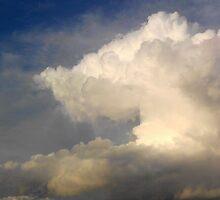 White Cloud by kashmirecho