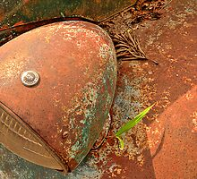 Fallen to Rust by Prasad